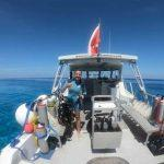 Explore Cayman on our Three Tank Dive Charter